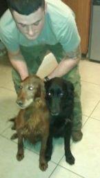Black dog March 2012